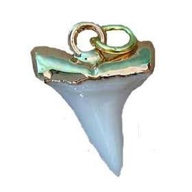 pendentif dent mako 1.7 cm monture dorée bijoux surfeur