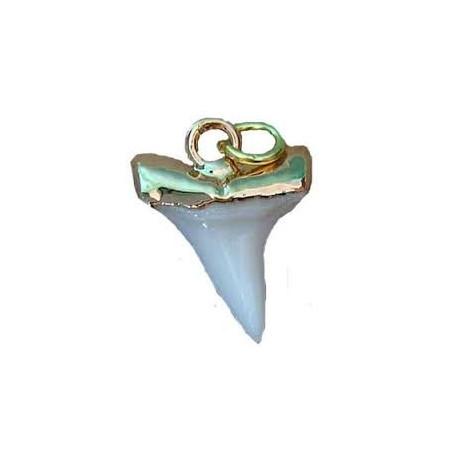 pendentif dent mako 1.7 cm monture dorée