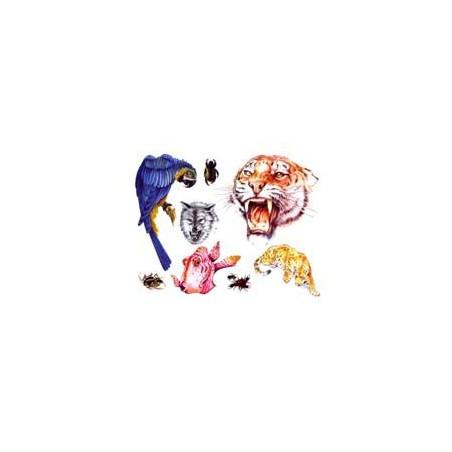 Tatouage poisson tigre loup perroquet