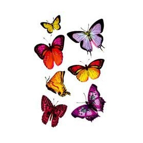 Tattoos Papillons temporaires