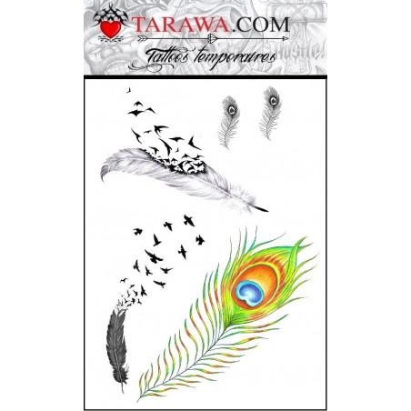 Tattoos temporaires 5 Plumes