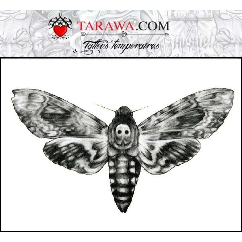 Tattoo papillon sphinx