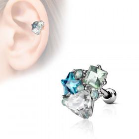 Piercing cartilage oreille divers motifs