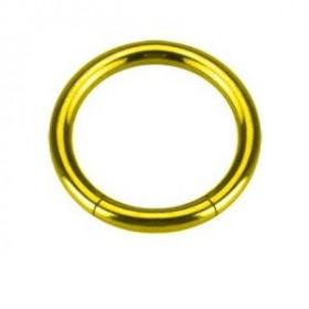 Piercing Anneau segment gros diamètre pour prince albert en acier chirurgical de couleur or