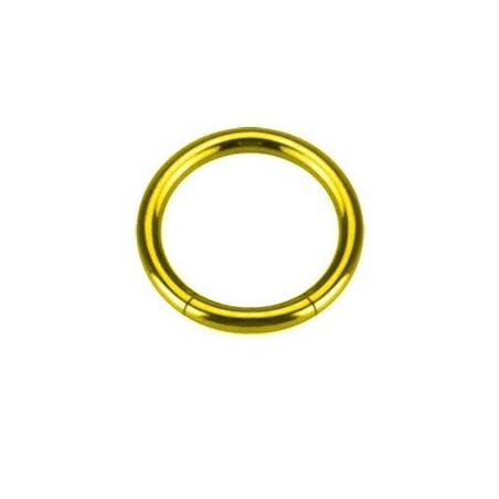 Piercing Anneau segment gros diamètre acier couleur or